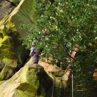 Nov 2009: Fight with the holly at the Roaches (Christine Stark)