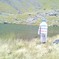 Ding contemplates the inviting waters of Llyn Glas (Dave Shotton)