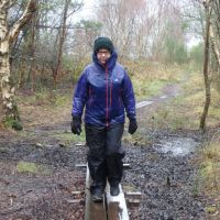 Mary in Newborough Forest - nice weather for duckboards (Dave Shotton)
