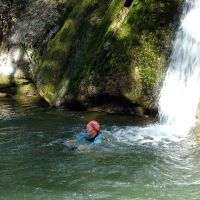 Midge swimming in Janet's Foss