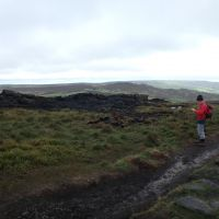 Roger surveys moorland fire damage