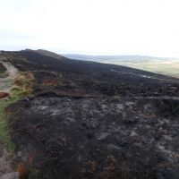 After-effects of August's moorland fire