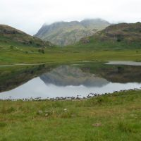 Final tarn. Blea Tarn. Everyone swam here including Ding