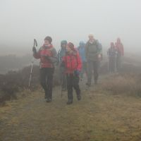 On the misty moors